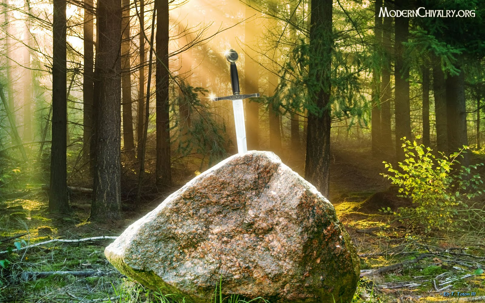Janelle Mcintosh: the sword in the stone wallpaper