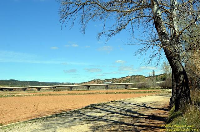 torrebaja-valencia-vega-turia-puente