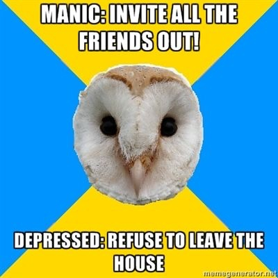 bipolar owl mania vs depression social meme