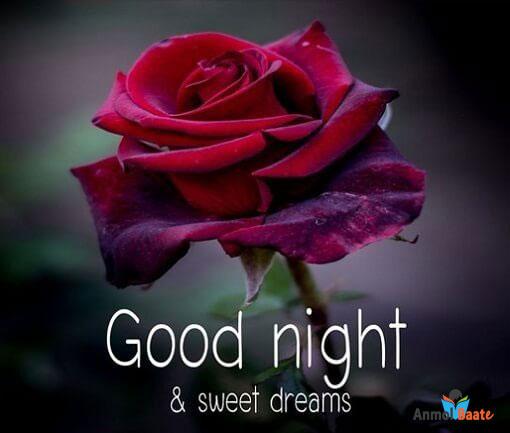 गुड नाईट शायरी इमेज डाउनलोड - Good Night Image Shayari Download