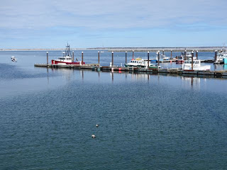 Provincetown 7