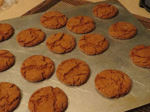 homemade gingersnap cookies