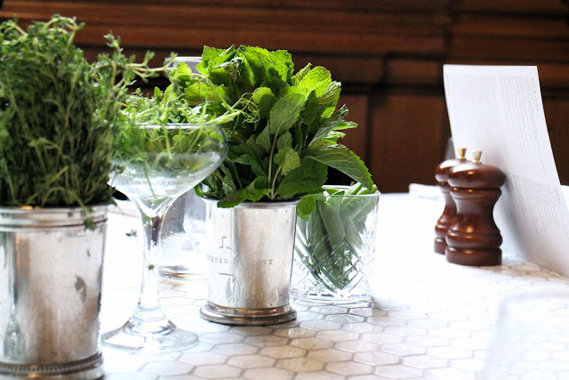 Herbs and cocktails, plants and interiors
