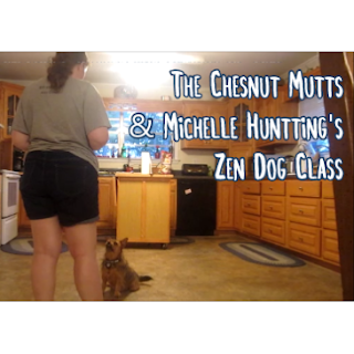 Zen Dog Class with Michelle Huntting