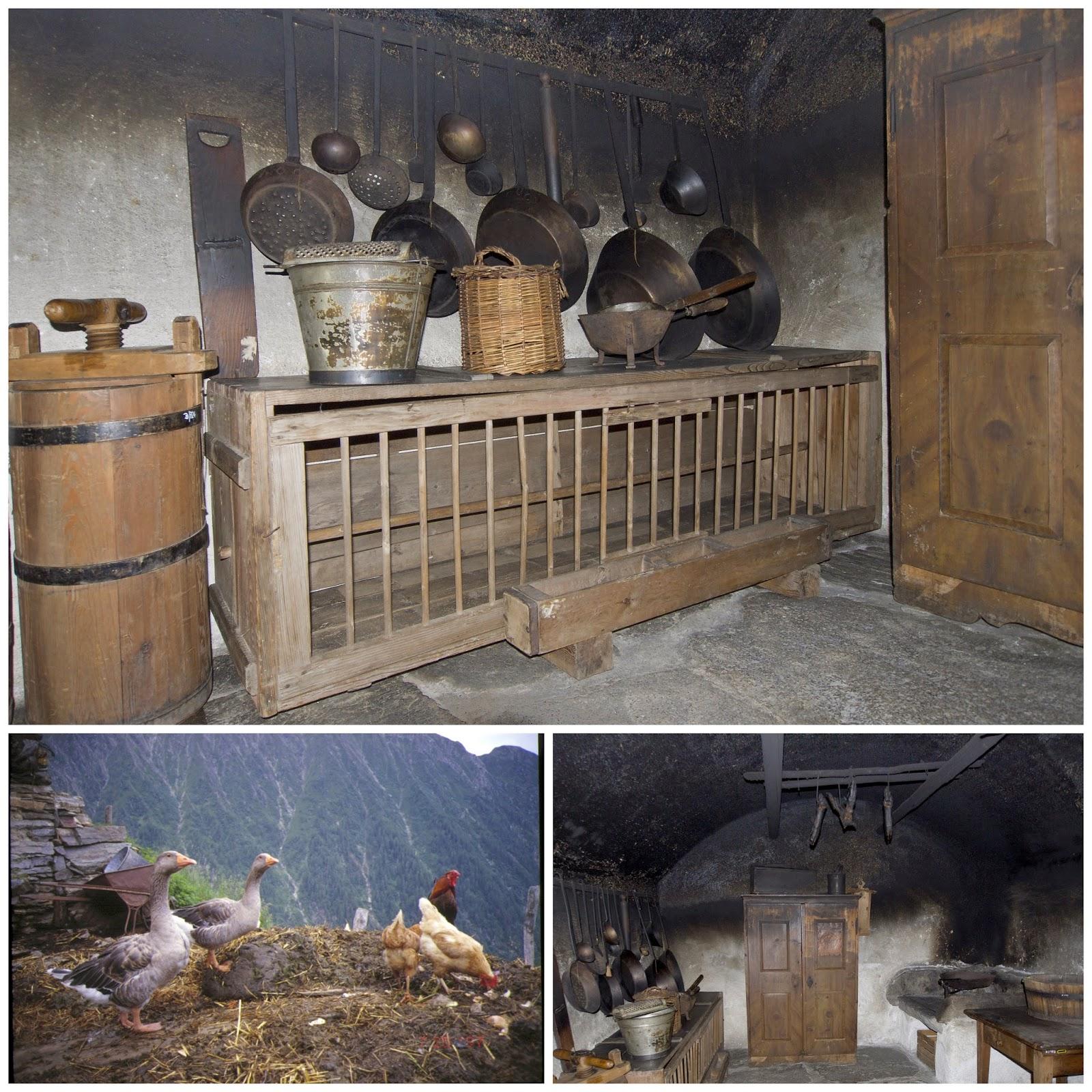 galline ovaiole in cucina
