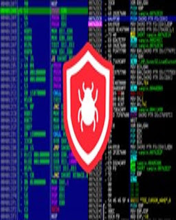 reverse-engineering-debugging-and-malware-analysis-2021