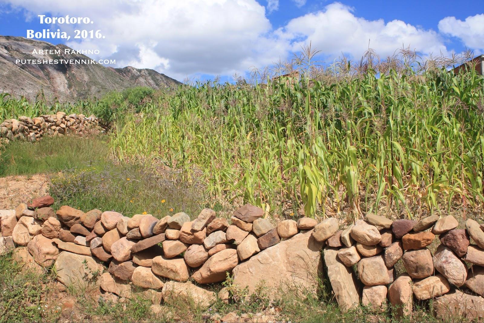 Ограда из камней