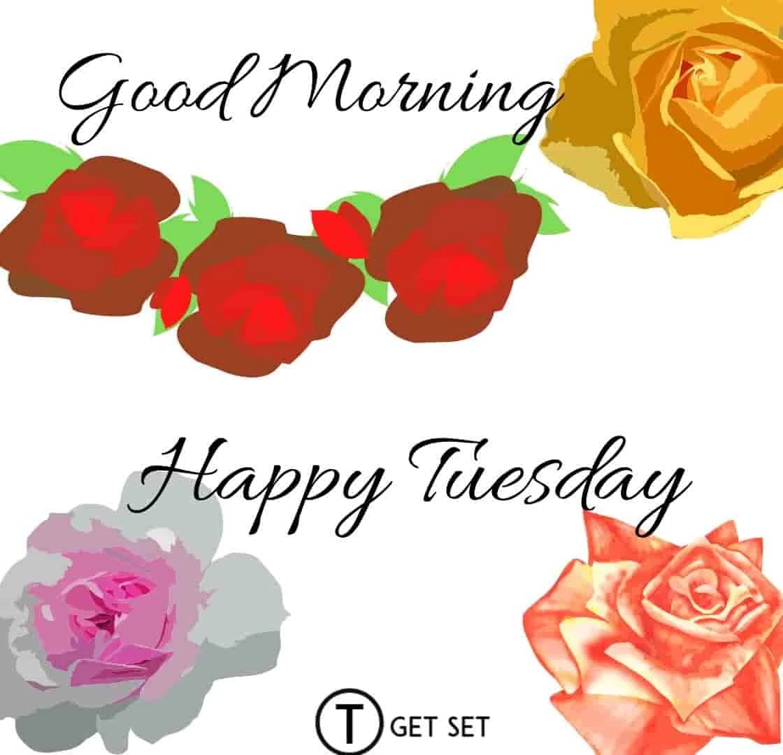 rose-and-flower-happy-tuesday-image