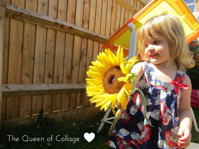 #MySundayPhoto - Give a girl a Sunflower