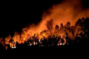 Corona Belum Usai, China Dilanda Kebakaran Hebat, 19 Orang Tewas