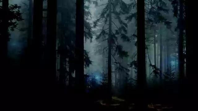 Mystery of Aleya Ghost lights
