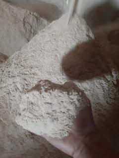 konsentrat sapi, bahan baku ternak, katol padi