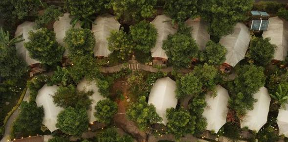 oaktree glamping resort