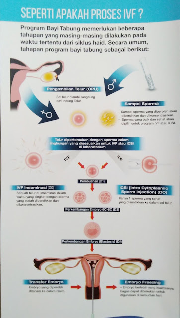 Program bayi tabung dari Malaysia Healthvare