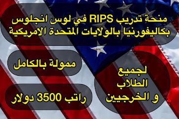 منحة تدريبية ممولة بالكامل 2021| فرصة تدريب RIPS في الولايات المتحدة الامريكية بولاية كاليفورنيا ممولة بالكامل لجميع الطلاب