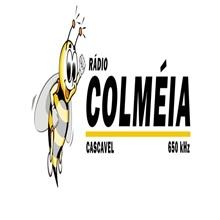 Ouvir agora Rádio Colméia 105,9 FM - Cascavel / PR