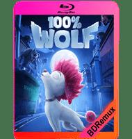100% LOBO (2020) BDREMUX 1080P MKV ESPAÑOL LATINO