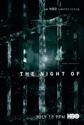 The Night Of (2016-) ταινιες online seires xrysoi greek subs