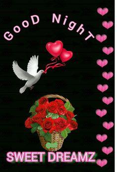 Good-Night
