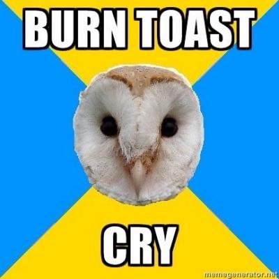 bipolar cry over burnt toast