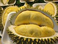 Tips Menanam Buah Durian yang Tepat