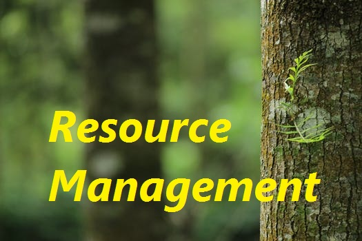 resource management in cloud computing