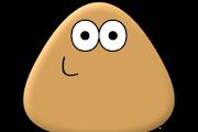 Download Pou V1.4.77 Mod Apk (Unlimited Coins) Terbaru