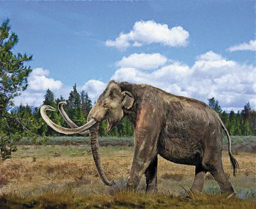The Big Study: At The Margins Of Cryptozoology: Mastodons ...  Prehistoric