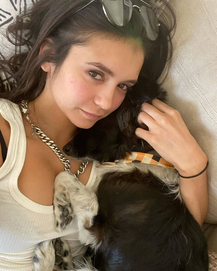 Instagram accounts of 15 celebrities' pets | Maverick is the best companion of Nina Dobrev.
