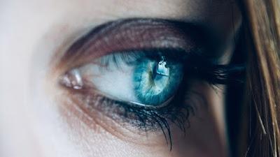 bulu mata