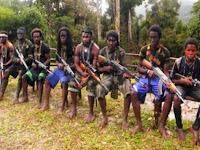 Lontarkan Tembakan ke Udara, KKB di Papua Teror Warga