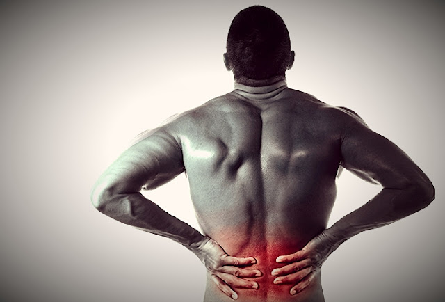 workouts for back pain