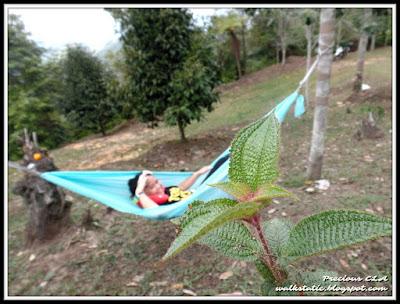 Hammock Malaysia