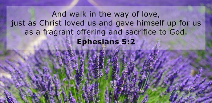 And walk in the way of love, just as Christ loved us and gave himself up for us as a fragrant offering and sacrifice to God.