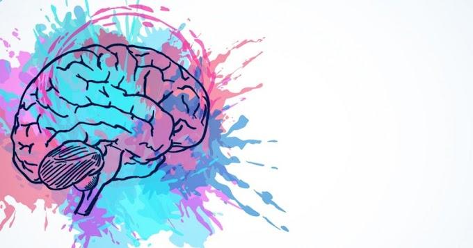 Cómo aprovechar la plasticidad de nuestro cerebro