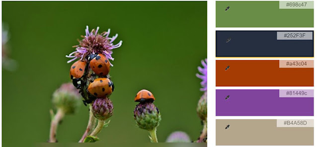 Ladybug on Thistle color palette with green, dark blue, red, purple, and beige by QuiltFabrication