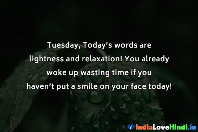 tuesday good morning quotes for whatsapp
