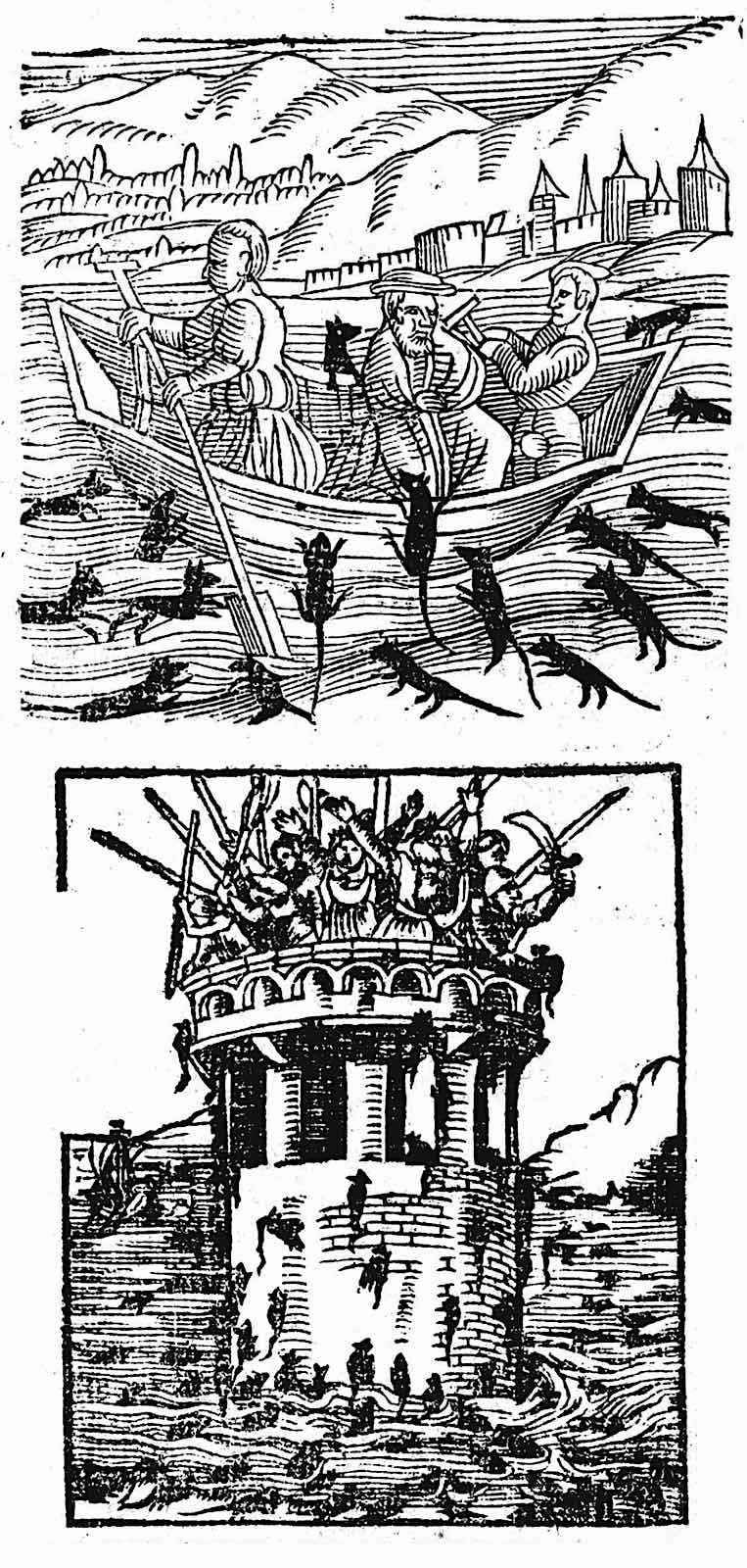1557 illustrations of rats reacting to a flood