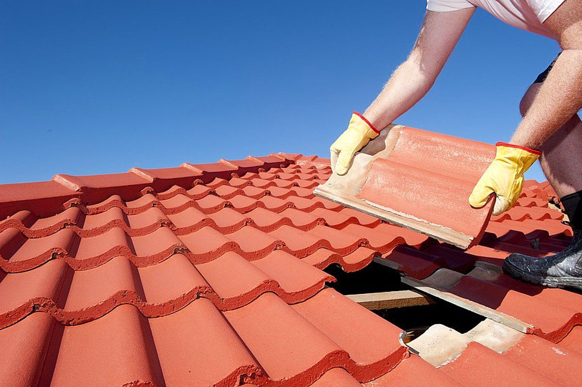 Maintain Roofs