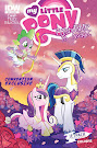 MLP Friendship is Magic #27 Comic Cover Ponycon Variant