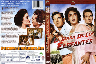 Carátula dvd: La senda de los elefantes