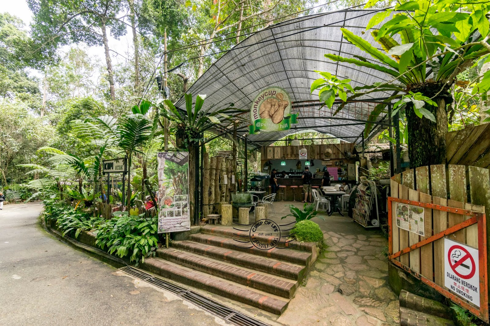 The Cafe in the Highest Point of Penang - Kopi Hutan Monkey Cup Cafe @ Penang Hill