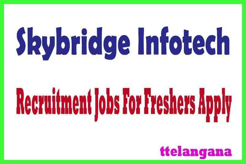 Skybridge Infotech Recruitment Jobs For Freshers Apply