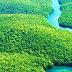 Σύμφωνο προστασίας του Αμαζονίου από επτά χώρες της Λατινικής Αμερικής - Δεν προσκλήθηκε η Βενεζουέλα