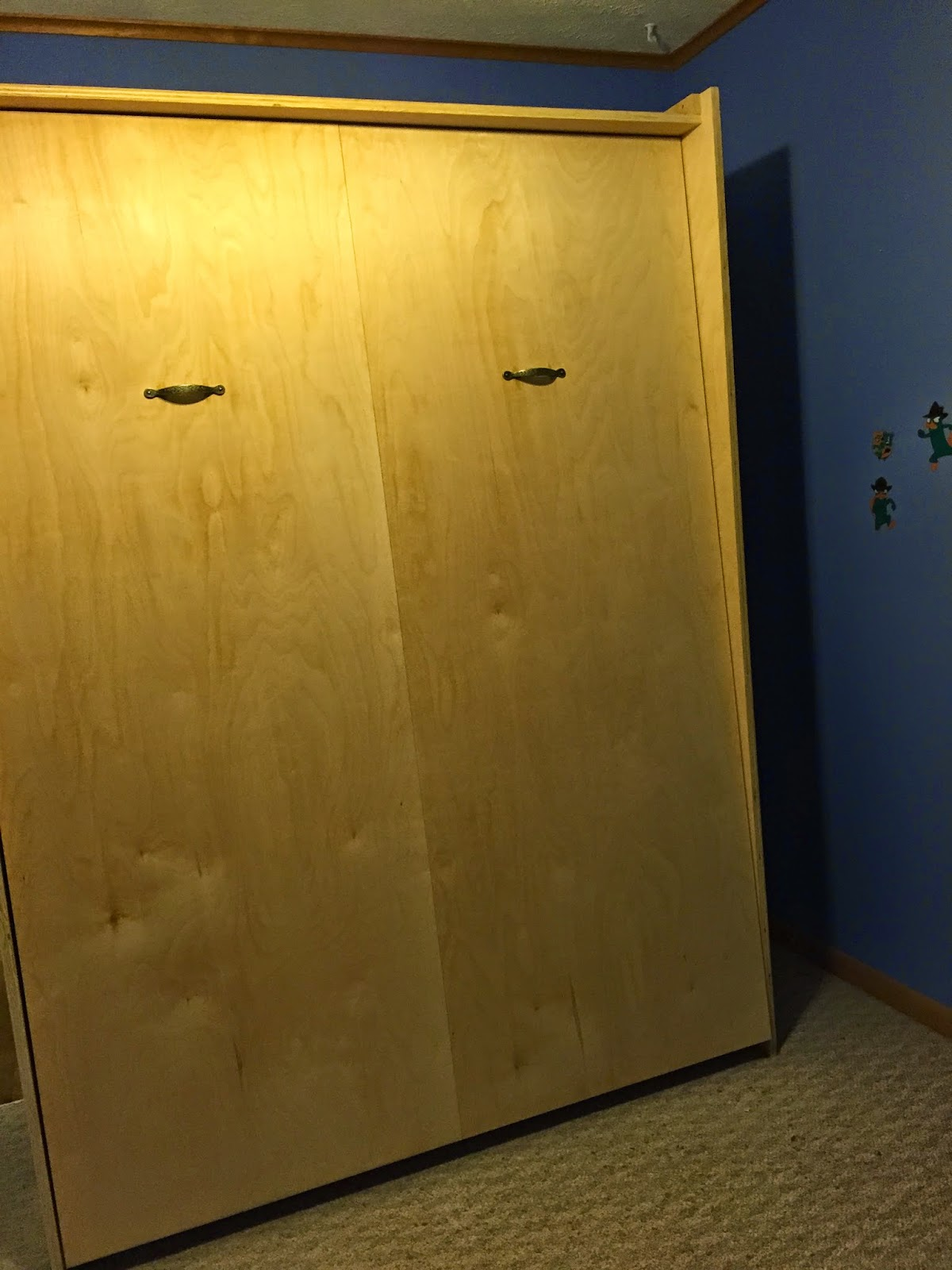 Photo of the finished Murphy bed cabinet installed against the wall.