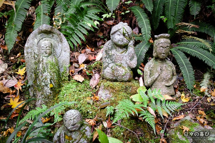 Stèles et jizô pris dans la végétation, temple Mitaki-dera, Hiroshima