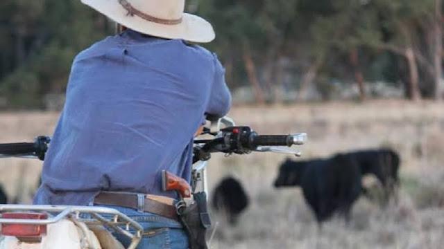 http://www.conteudojuridico.com.br/consulta/artigo/53687/o-novo-conceito-de-posse-estendida-de-arma-de-fogo-em-propriedade-rural