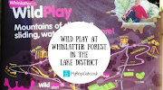 Wild Play at Whinlatter Forest in The Lake District