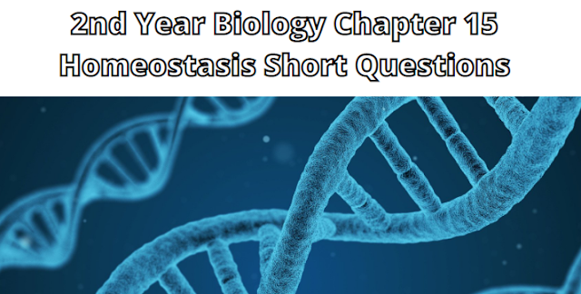 2nd Year Biology Chapter 15 Homeostasis Short Questions
