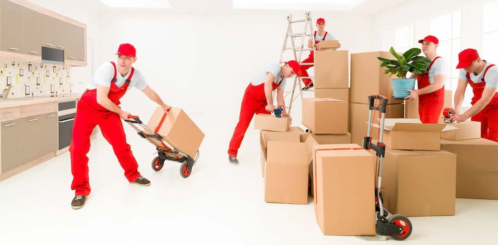 moving and storage services Magallanes LTD